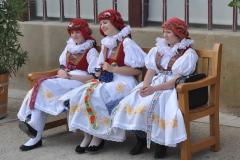 2016_05 Čechy pod Kosířem